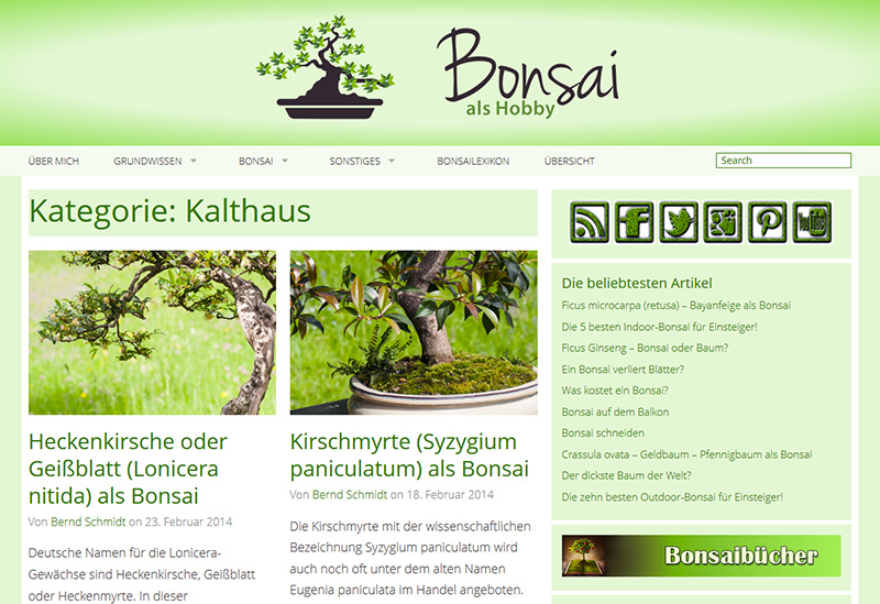 Bonsai als Hobby