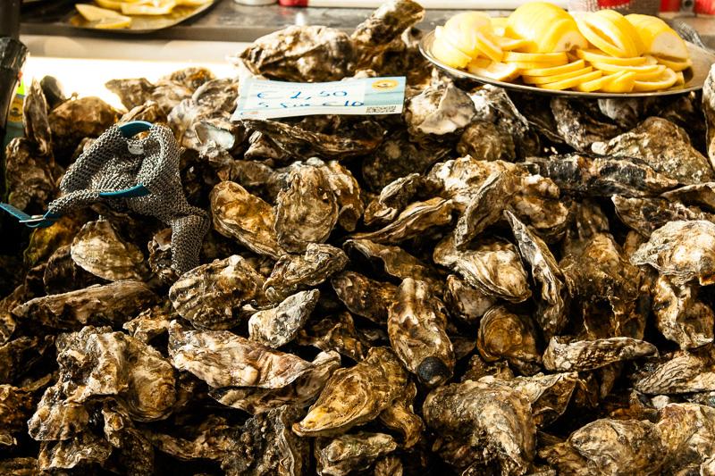 Frische Austern auf der Slow Food Messe 2014